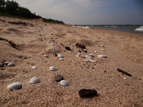 on the Baltic Sea beach