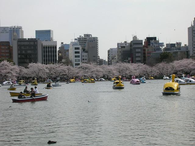 d7-24-ueno-park