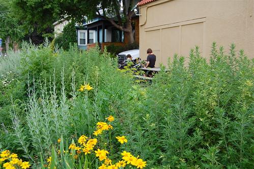 Urban Gardens @ Crema