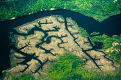 CN734 Fractal Marshes (listentoreason) Tags: trees water forest canon river landscape scenic favorites aerialphotograph ef28135mmf3556isusm score40