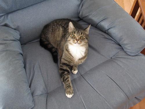 Santana in recliner