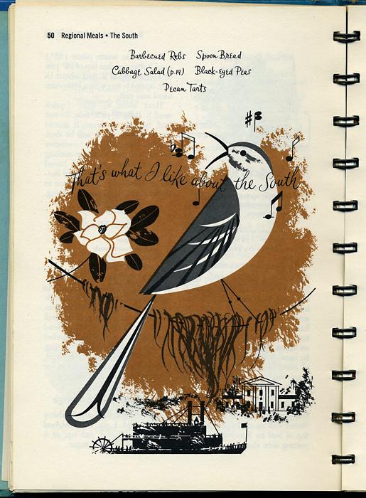 harper southernbird