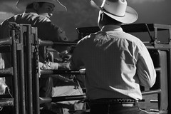 Advice (Melissa Faye Shaner) Tags: blackandwhite canon cow cowboy pennsylvania gloves 7d rodeo calf rider chute crookedcreek timed fordcity ipra rawhiderodeo ropecalfroper wrestlingiprca timerbw