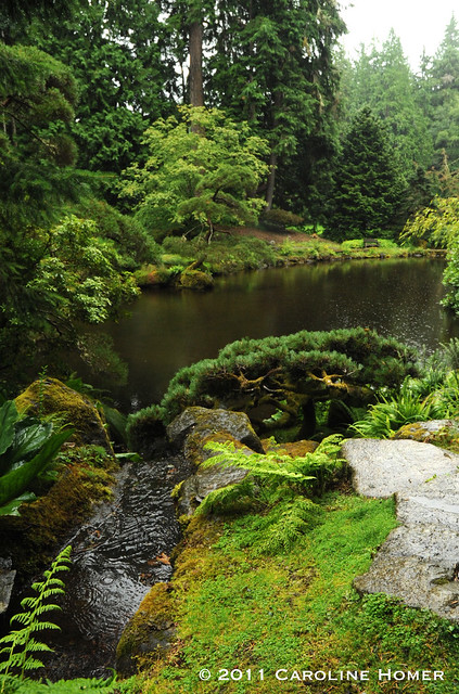 Japanese Stroll Garden Springfield: The Shovel-Ready Garden: Seattle Garden Bloggers' Fling