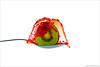 Kiwi splash II - Explore [FrontPage] (pascalbovet.com) Tags: red white motion green water fruit drop freeze splash kiwi onwhite highspeed arduino hivizcom