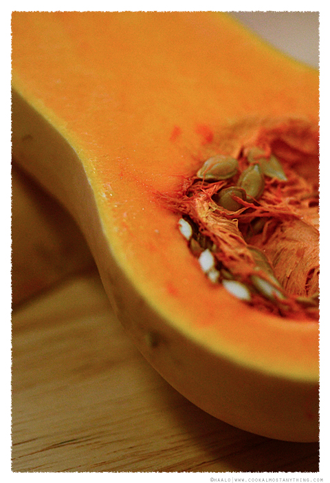 butternut pumpkin© by haalo