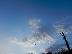 in afternoon (afshin joel) Tags: sky clouds iran joel   afshin      taleqan