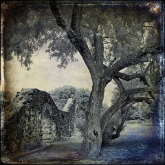 Landscape - Old Style (PCsAHoot - Dipping toes in...) Tags: history texture sanantonio texas ourtime missionsanjuan idream contemporaryartsociety memoriesbook saariysqualitypictures artistictreasurechest redmatrix magicunicornverybest magicunicornmasterpiece trolledproud sbfmasterpiece eovsimpressive