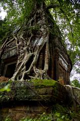 Prasat Pram (Keith Kelly) Tags: stone religious temple ancient asia cambodia southeastasia capital ruin roots kingdom holy sacred kh siemreap angkor laterite kampuchea kohker khmerempire jayavarmaniv prasatpram brahmanic 928944ad