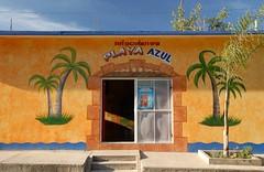 Little Store Oaxaca Mexico (Ilhuicamina) Tags: shop buildings mexico palmtrees tienda oaxaca walls launion