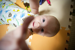 The long arms of the Nano! (Out of Focus [sic]) Tags: baby japan arms buddy mat reach nanowes