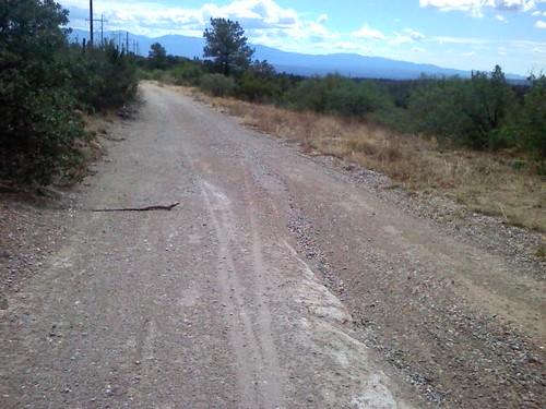 Greater Los Alamos Rootsnake