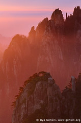 Sunrise from Stone Monkey Gazing Over a Sea of Clouds Lookout, Baiyun Scenic Area, Huangshan (Yellow Mountains), China (ILYA GENKIN / GENKIN.ORG) Tags: china morning travel sunset sea mist mountain tree nature rock vertical fog stone clouds cn forest sunrise landscape asian dawn evening nationalpark twilight scenery asia outdoor dusk hiking watching chinese perspective scenic tourist lookout boulder alpine area granite wilderness oriental gazing baiyun attraction yellowmountains huangshan anhui eastasia peoplesrepublicofchina stonemonkey mthuangshan anhuiprovince mounthuang huangshanmountains