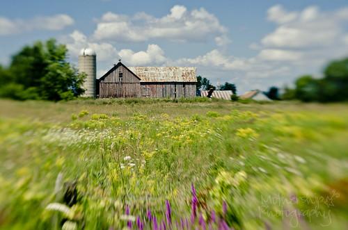224:365 Lensbaby farm