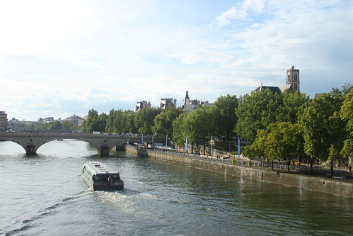 Obligatory Seine photo #1
