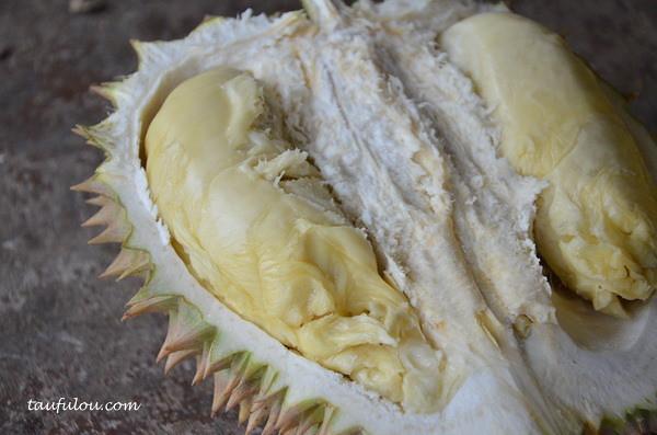 balik pulau durian (10)