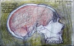 Level-headed. 6 August, 2011. (Sharon Frost) Tags: art skulls skull haiku head jaw paintings drawings anatomy heads bones sketches sketchbooks journals notebooks bienfang sharonfrost daybooks