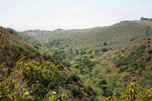 escondido canyon view