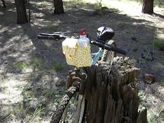 BikeBag_1