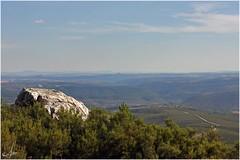 A vista de Lobo (Ana_Lobo) Tags: espaa naturaleza landscape spain paisaje sierra culebra pinos zamora roca horizonte trsosmontes sanabria carballeda