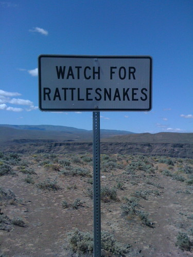 Watch For Rattlesnakes by DRheins
