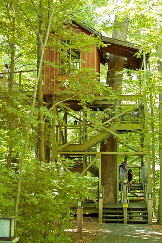 Lookout Loft Treehouse.
