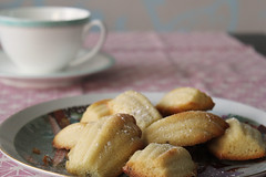 Lavender Madeleines (crayonmonkey) Tags: food french baking sweet lavender biscuits teatime honet madeleines