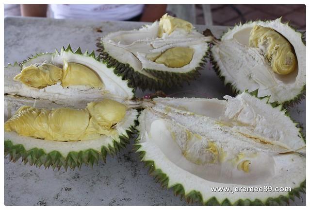 Pesta Durian @ Balik Pulau - My Durian 4