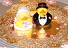 Mr and Mrs Duck (Minkas Studio) Tags: wedding groom bride duck veil rubber duckie