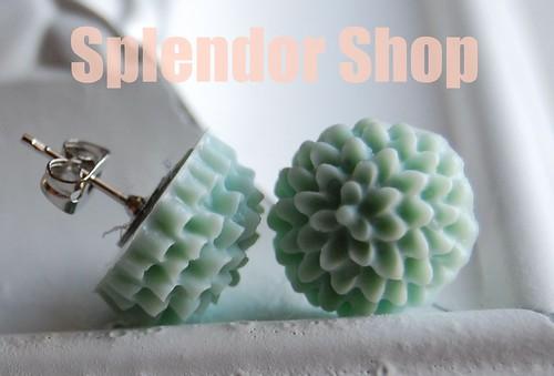 SplendorShop2