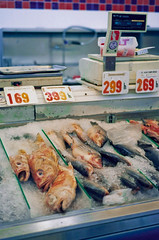 Marina Market (coolgene) Tags: blue orange fish film marina frozen nikon market kodak catch 100 ektar n65
