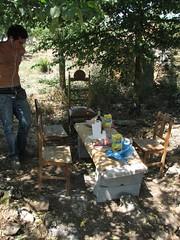Le déjeuner sur l'herbe (aulasdeviolino) Tags: trasosmontes ledéjeunersurlherbe altodouro martimtirado quintadosbaldo