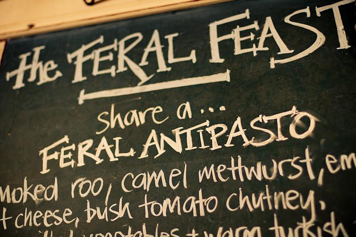 The Feral Feast - roadkill, anyone?