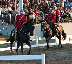 The Performance (Tawaw) Tags: horses canada flag ottawa police rcmp equestrian stetson mounties mountedpolice royalcanadianmountedpolice policehorses musicalride redserge canadianpolicecollege