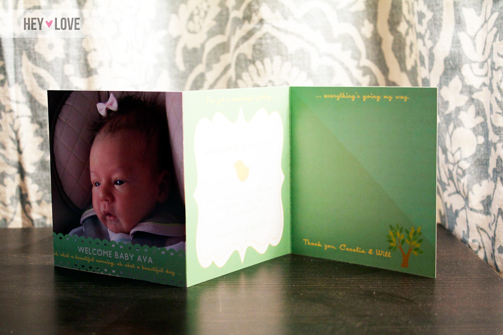 Baby Ava Birth Announcements