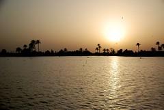 Jardins de la Mnara (cranjam) Tags: sunset tramonto basin morocco marocco marrakech menara swallows rondini bacino qanat menaragardens artificiallake lagoartificiale abdalmumin giardinidellamenara jardinsdelamnara