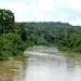 Rios enormes serpenteiam pela floresta