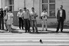 . (ngravity) Tags: street bw bird canon blackwhite russia moscow pigeon candid streetphotography pedestrians nocrop zebracross moskva eos50d thedefiningtouch deftouch makrygiannakis