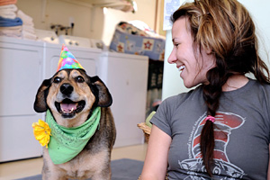 Dog wearing a birthday hat with a woman