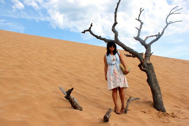 the dunes 15