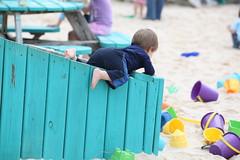 Determination in the toy bin