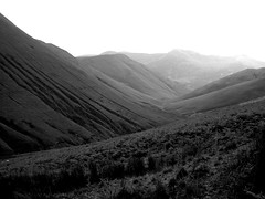 (//Bear) Tags: blackandwhite plants white lake black mountains texture grass silhouette river leaf view district lakedistrict valley glacial
