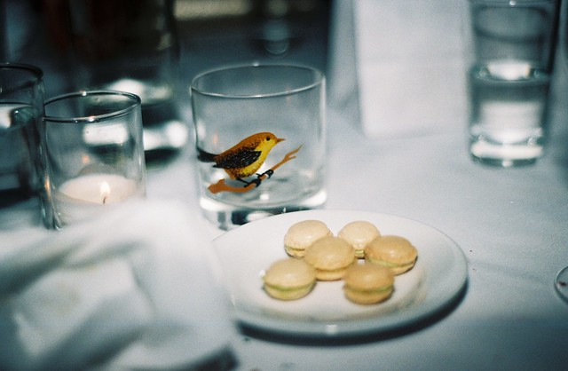 Little Bird : Mini Macarons