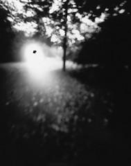 Thomas Bachler