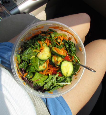 Have Salad, Will Travel