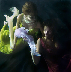 (Kathleen Wilke Photography) Tags: night nikon underwater thedantecircle