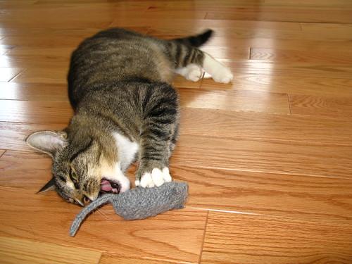 Handknit Mouse
