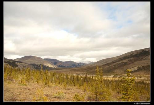 Landscape of Ivvavik