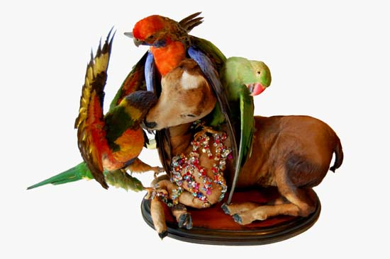 The Inseparables, 2009, Angela Singer--a fawn posed with three colorful birds around its head