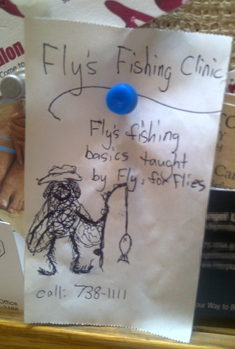 Fly's Fishing Clinic: Fly's fishing basics taught by Fly, for Flies